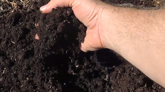 Soil vs compost what 39 s the difference grow your heirlooms for Topsoil vs potting soil