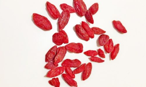 Growing Goji Berry Or Wolfberry Plants From Seeds Grow Your