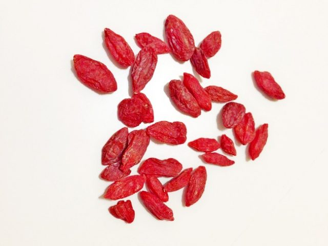 Growing Goji Berry or Wolfberry Plants From Seeds